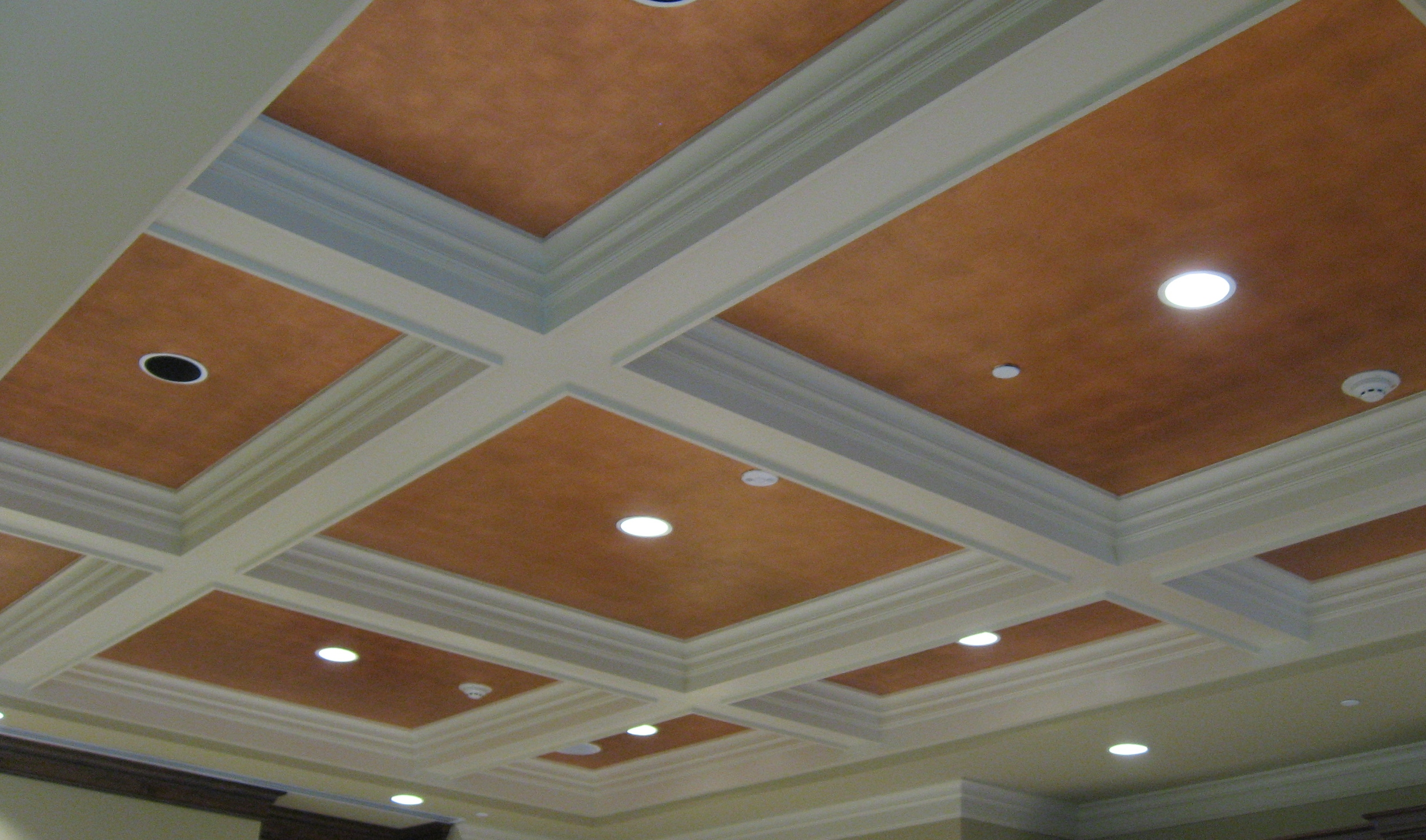 CEILING FINISHES : Patricia Delaney