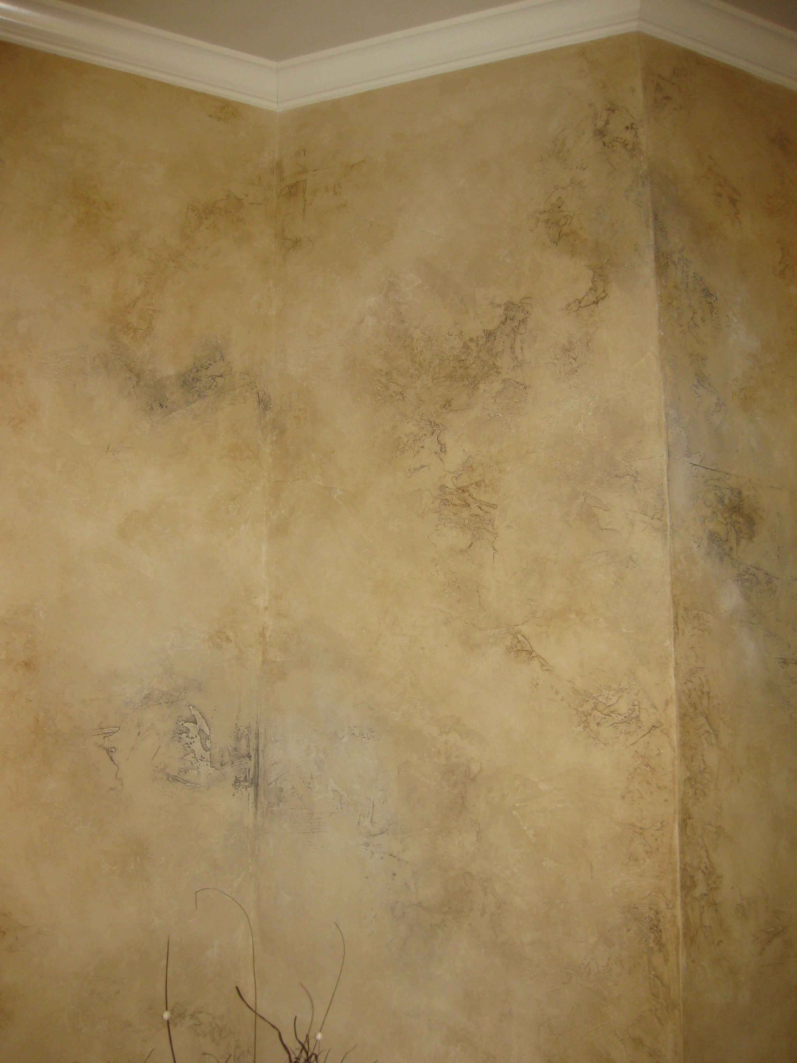 Decorative Wall Finishes Patricia Delaney